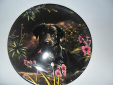 """Wedgwood Playful Puppies """"A Taste Of Spring !"""" labrador plate"""