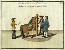 REITSCHULE - Cavendish - Courbetten zurück - kolor. Kupferstich 1764