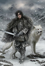 Game of Thrones Ice Fire Tyrion Lannister Jon Snow wolf art print poster