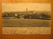 1902 alte AK Gruss aus Zielenzig Sulecin Polska Polen Lebus