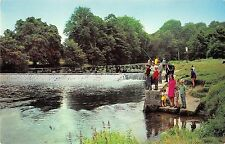 BR67071 the weir  rier stour  blandford forum dorset  uk  14x9cm