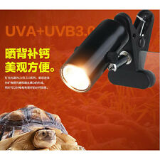 EB Hot Reptile Lizard Insect Tortoise Ceramic UV UVB Lamp Light Holder + Lamp