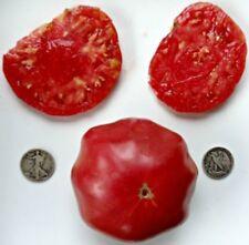 Brandywine Pink - Organic Heirloom Tomato Seeds - Premier Beefsteak - 40 Seeds