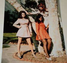 CYNTHIA MYERS & CAST / BEYOND THE VALLEY OF THE DOLLS /  8 X 10  COLOR  PHOTO