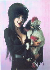 ELVIRA MISTRESS OF OMNICHROME 1997 COMIC IMAGES PROMO CARD 2 OF 2