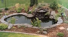 WATER GARDEN FOUTAIN  KOI POND KIT LINER & PUMP 9' X 6' LINER & 5 Water Lilies