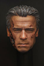 Custom 1/6 Scale BD Arnold T800 Guardian Head Sculpt For Hot Toys Body