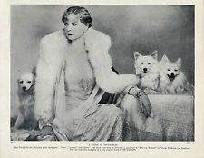 GERMAN SPITZ POMERANIAN FILM STAR ALICE TERRY AND HER DOGS LOVELY 1934 DOG PRINT