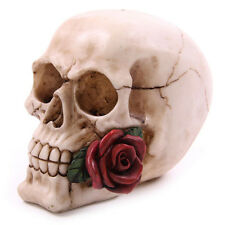 ROSE FROM THE DEAD Skull Decorative Ornament  Gothic Goth Vamp