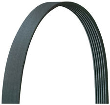 Serpentine Belt Dayco 5060923DR