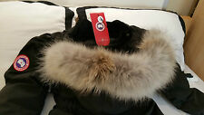 "2017 ""LATEST CONCEPT"" RED LABEL BLACK CANADA GOOSE TRILLIUM ""LARGE"" PARKA JACKET"