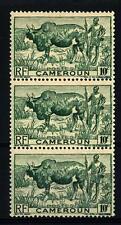 CAMEROUN - CAMERUN - 1946 - Zebù con pastore.