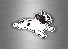 Decal sticker vinyl decor tuning car motorcycle biker french bulldog dog