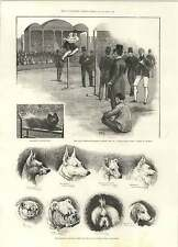 1892 Civil Service Athletics Sports Ht Bell High Jump Captain Grant Stairs