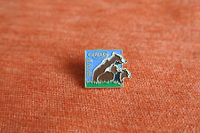 17666 PIN'S PINS OURS BEAR WWF CANAL+ TV TELEVISION