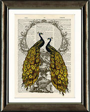 Old Antique Book page Art Print - Vintage Peacock 4 Dictionary Page Wall Art