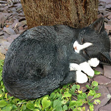 Black and White Cat dormir Vivid Arts Decoración De Jardín Interior/exterior