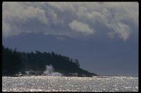 018092 East Sooke West Coast Vancouver Island A4 Photo Print