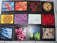 12 Bilder/Fotos in leuchtenden Farben, Größe: ca. 30 x 30 cm