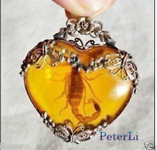Tibet amber Scorpion necklace Pendant