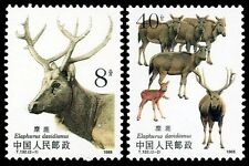 China Stamp 1988 T132 Wapiti MNH