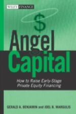 Angel Capital: How to Raise Early-Stage Private Equity Financing (Wiley Finance)