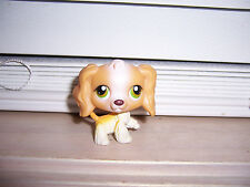 Littlest Pet Shop Cocker Spaniel Dog  #79 LPS Hasbro E