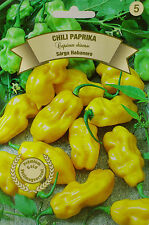 Extremely Hot Habanero pepper seeds. Yellow Habanero variety. approx. 10 seeds.