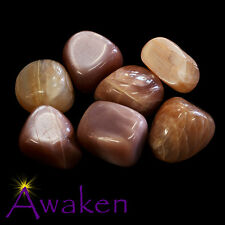 *ONE* PEACH MOONSTONE Natural Tumbled Stone Approx 15-20mm *TRUSTED SELLER*