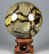 322g Polished DRAGON SEPTARIAN sphere Crystal w/Rosewood Stand Madagascar