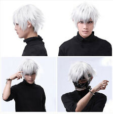 Cool Men Handsome Boys Short Silver White Heat Resistant Hair Synthetic Hair Wig