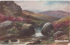 POSTCARD  DARTMOOR  On The Lyd        Tuck