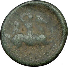 Pharsalos Thessaly 5th cent BC Ancient Greek Coin  Ahena Cult Horse Rare i19552