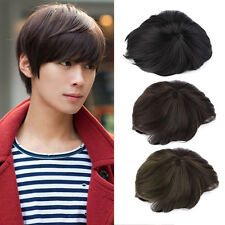 Korean Men's Handsome Short Straight Hair Full Wigs Cosplay Party 3 Colors XC