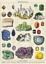 Minerals - Mieralogie   Poster Cavallini & Co 20 x 28 Wrap