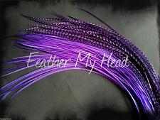 10 Grizzly Whiting Farms Saddle Hackle Feather Hair Extensions Purple