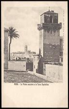 cartolina ROMA la palma secolare e la torre capitolina