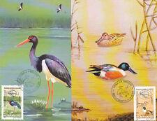 Romania 1999, CEPT, Europe, ducks, CM, maxima, Danube Delta