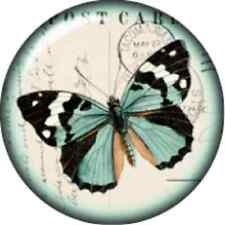 Snap button Domed Butterfly Postage stamp charm  Jewelry 18mm