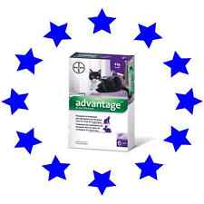 Advantage Flea Control for Cats Over 4kg - 6 Pack