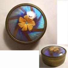 BOITE fleur AILE de PAPILLON sous verre bombé LAITON ruban croisé LAURIER sg GUY