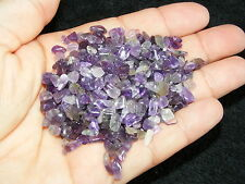 2000 x Amethyst Tumblestones Mini Chip 3mm-5mm Crystal Bulk Wholesale