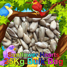 25KG Sunflower Hearts Bakery Grade Dehulled Kernels for Wild Bird Food Bulk Bag
