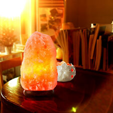 Himalayan Natural Ionic Rock Crystal Salt Night Lamp Air Purifier Dimmer 7-11LBS