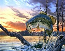LARGE MOUTH BASS STRIKING      MOUSE PAD  IMAGE FABRIC TOP RUBBER BACKED