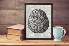 Vintage Human Brain Drawing  Lyric Upcycled Vintage Dictionary Page Art Print A4