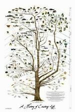 Tree of Life Art Science Posters Christian Art Prints Wall Art Wall Decor 24x36""