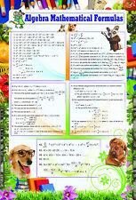 Laminado De Álgebra mathmatical fórmulas Cartel | enseñanza educativa Matemáticas Escolares