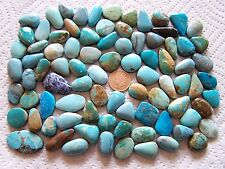 85 Mixed Turquoise Cabs 1000 carats Blue Green Cabochons Wholesale Lot