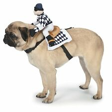 Medium Zack & Zoey Show Jockey Saddle Dog Costume